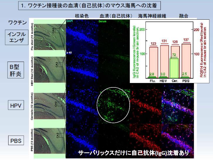 http://robust-health.jp/article/%E6%B1%A0%E7%94%B0%E7%8F%AD.png