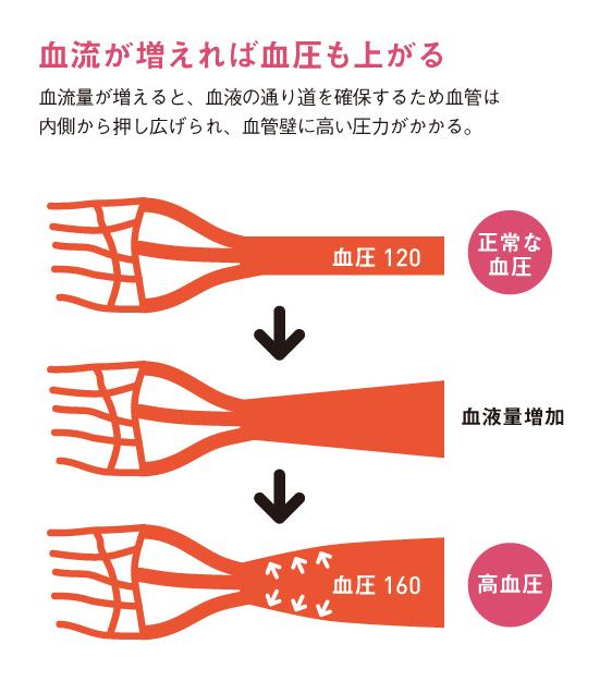 http://robust-health.jp/article/109_zuhan02.jpg