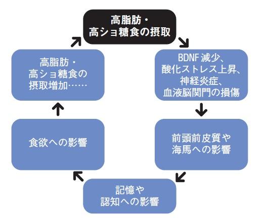 http://robust-health.jp/article/91-o.jpg