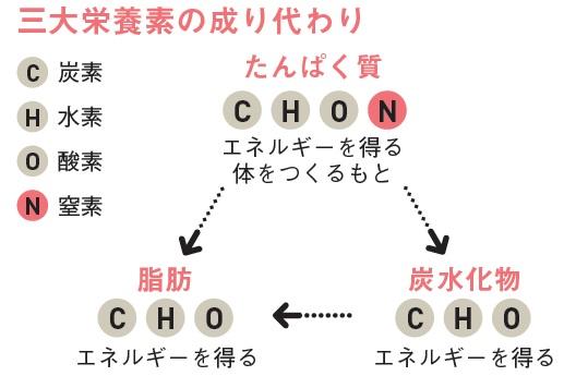 http://robust-health.jp/article/93-h.jpg